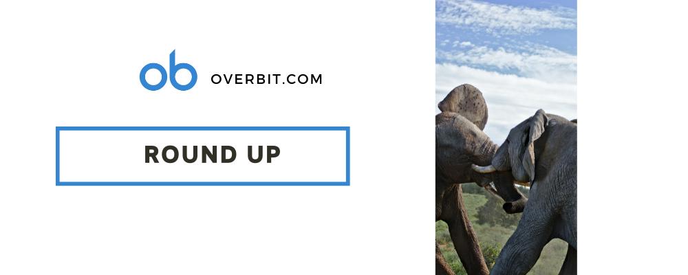 決済大手Paypalが仮想通貨の引き出しを可能に-Overbit's Weekly Round Up